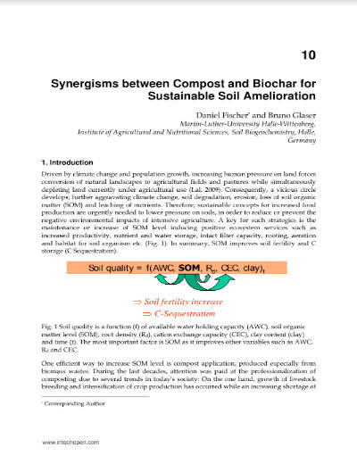 Synergisms between Compost and Biochar